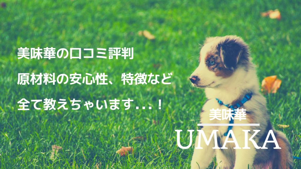 UMAKA(美味華)ドッグフード