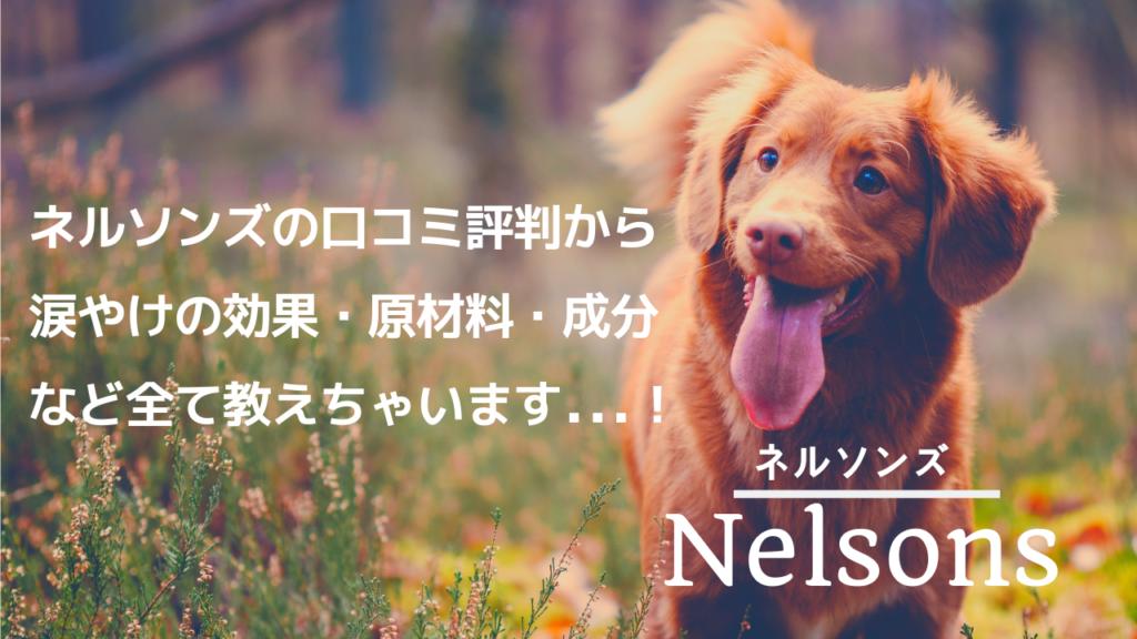 ネルソンズ