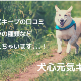 犬心元気キープ