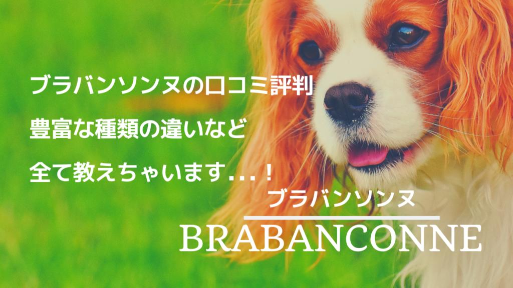 ブラバンソンヌ