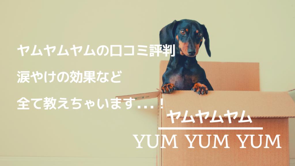 ヤムヤムヤムドッグフード