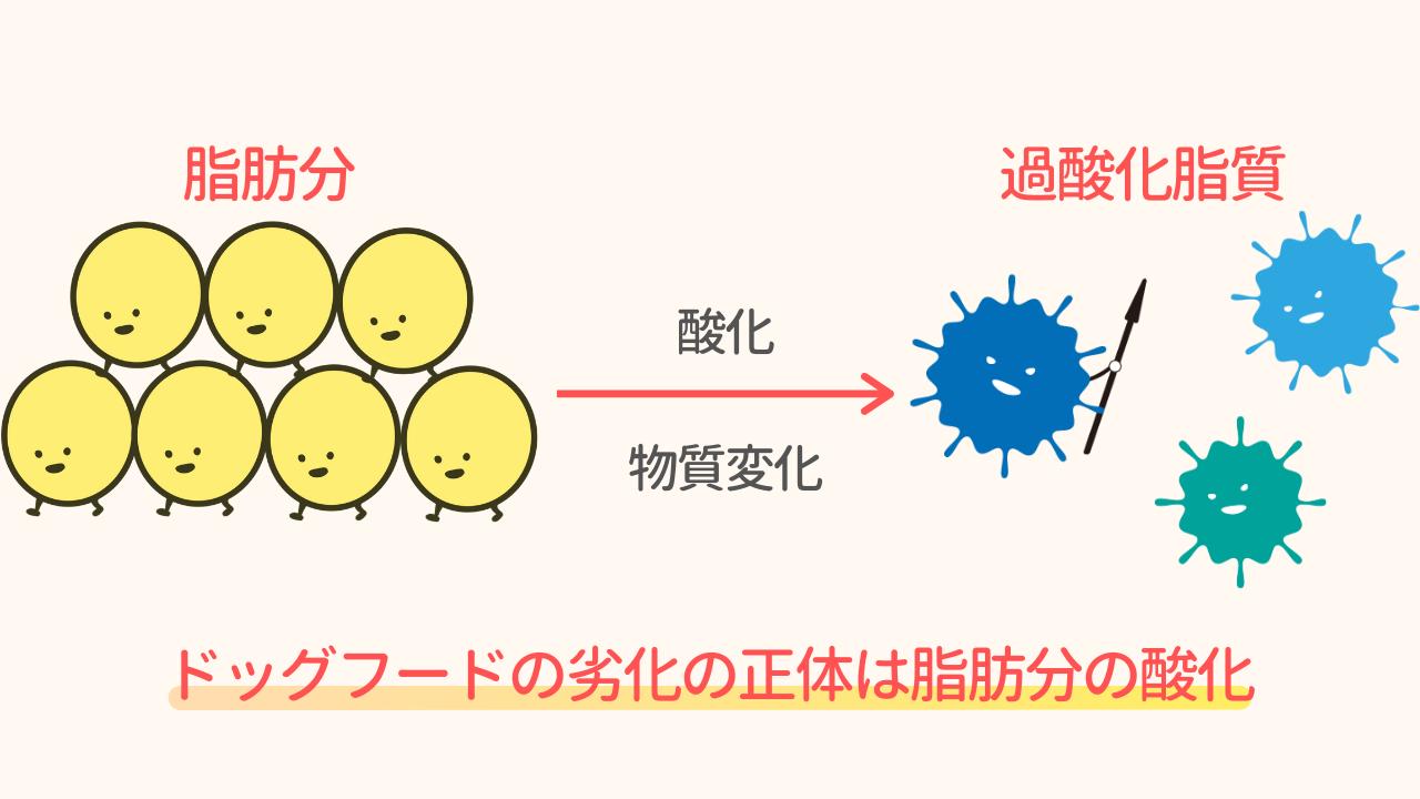 ドッグフードの脂肪分が過酸化脂質に変化