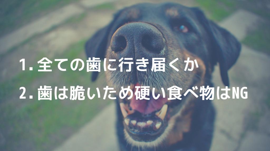 犬 歯石予防 食べ物