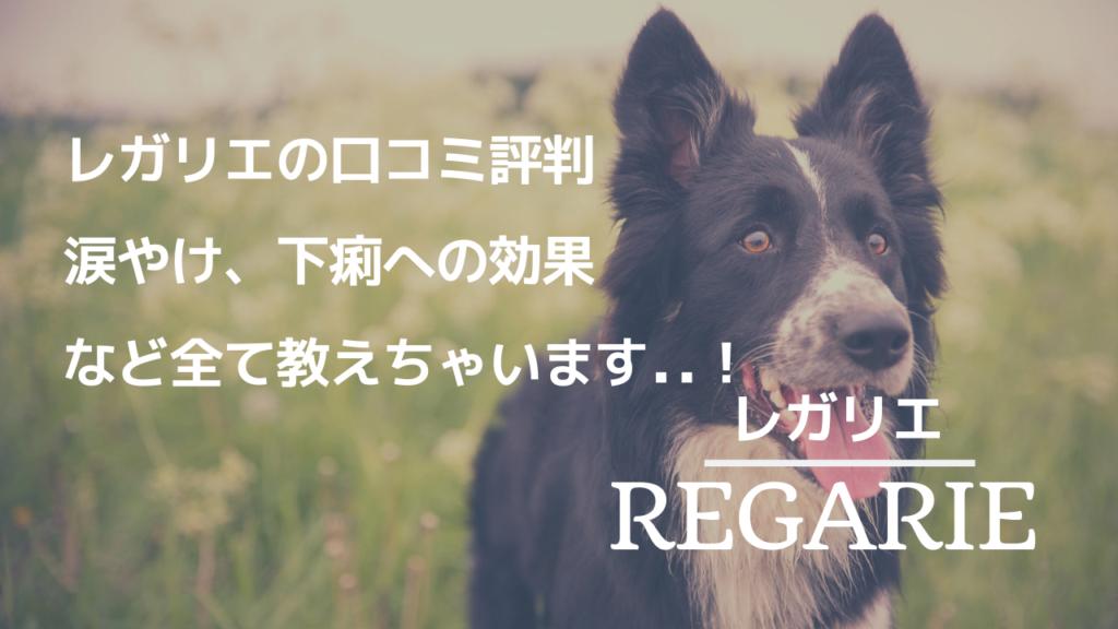 レガリエドッグフード 口コミ評判