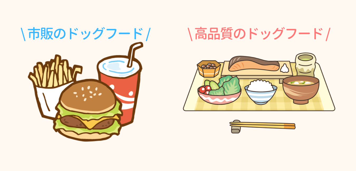 ジャンクな市販のドッグフードと、和食の高品質なドッグフード