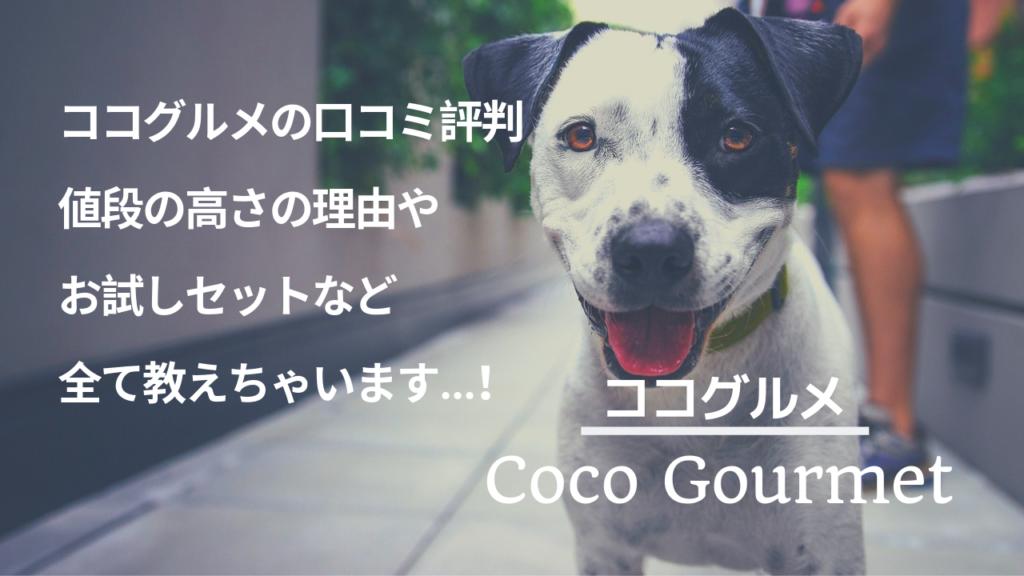 ココグルメ 口コミ評判